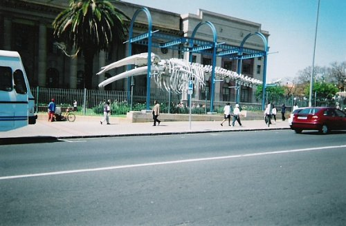 Outside museum, Johannesburg, South Africa