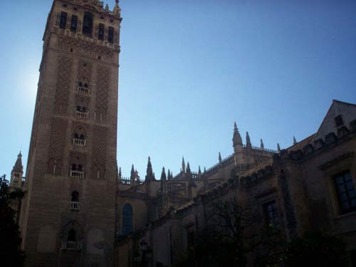 The cathedral tower (la Giralda)